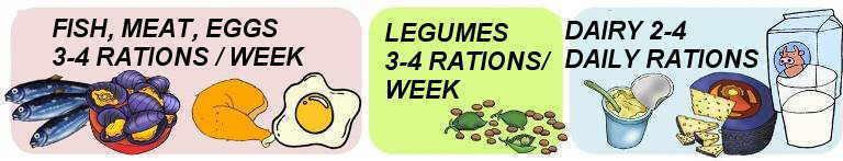 Food pyramid, proteins