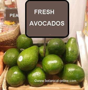 avocados in a market