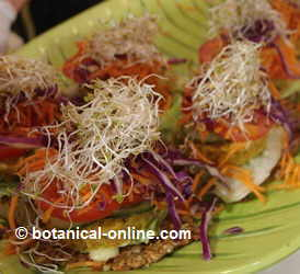 Vegetarian toasts with alfalfa sprouts