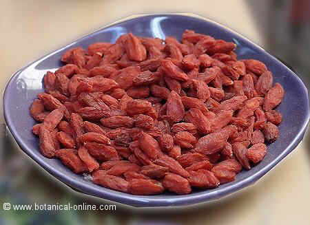 Photo of goji berries