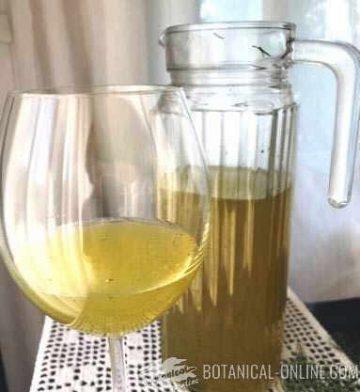 fennel soda