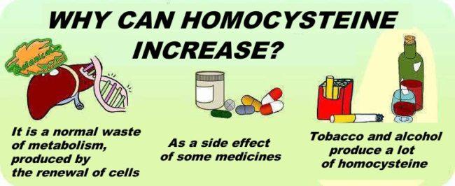 high homocysteine