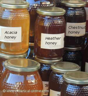 Different types of honey