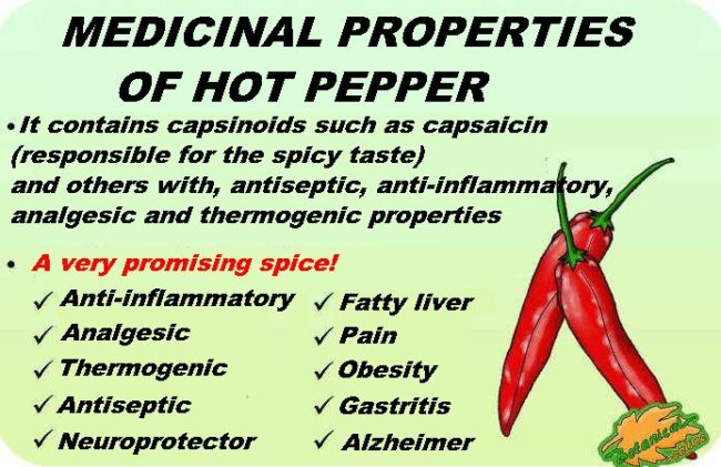 chili pepper properties