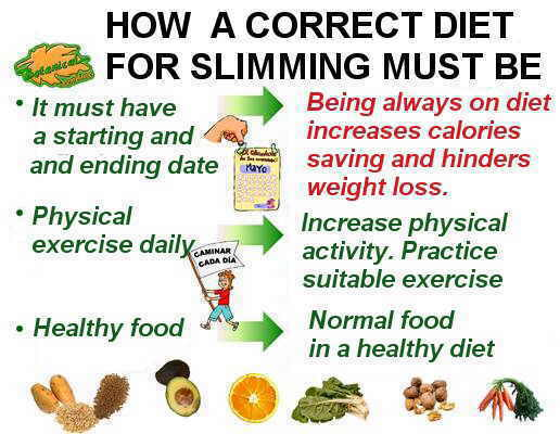 main steps to lose weight