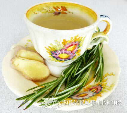 Infusion of rosemary and ginger
