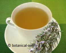 Photo of infusion of rosemary