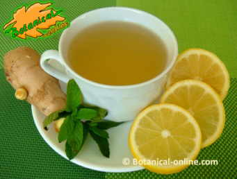 Infusion of ginger with lemon and mint