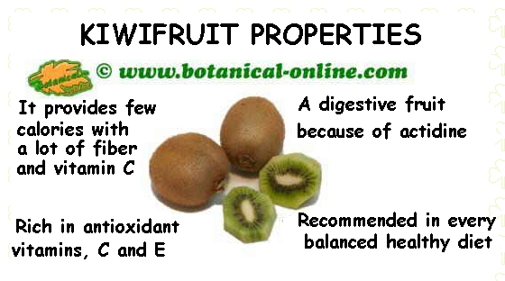 kiwifruit properties