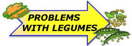 problems with legumes