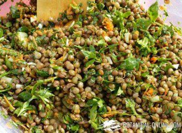 Lentils dish