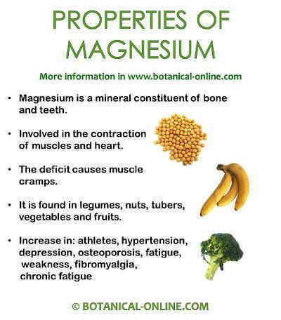 Magnesium properties
