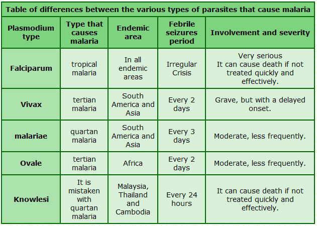 malaria types parasites