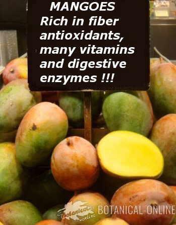mango digestive enzymes