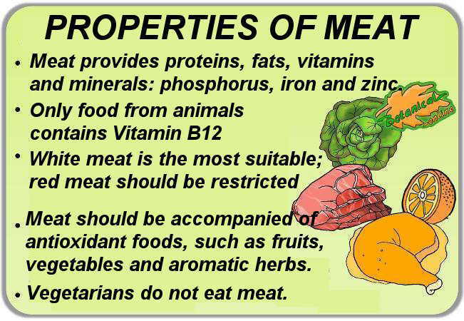 properties and benefits of meat