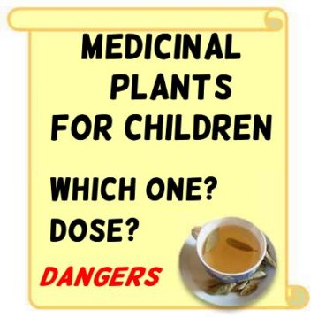Precautions with the use of medicinal plants in children – Botanical