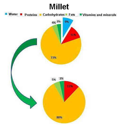 Nutrients of millet