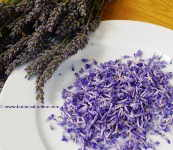 Lavender for your hair