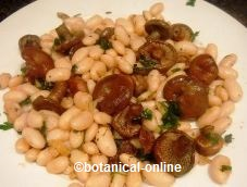 Chantareles with dry beans