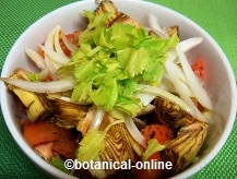 Salad with tomato,onion and artichoke