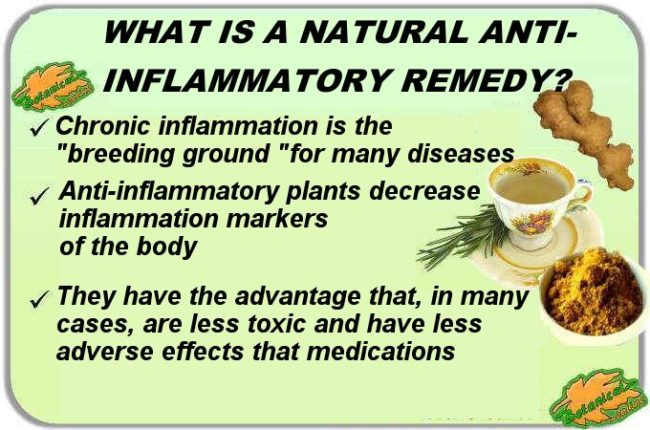 natural anti-inflammatory plants remedies