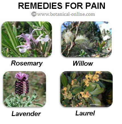 Medicinal remedies for pain