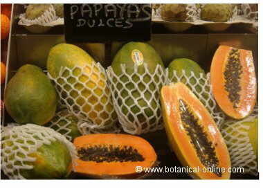 Papayas in a market