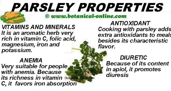 parsley properties