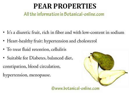 Pear properties