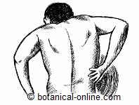 nephritic colic pain