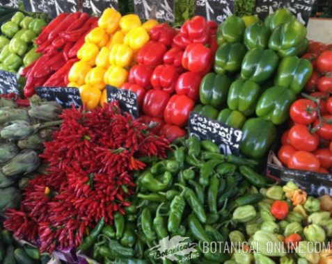 peppers in a market