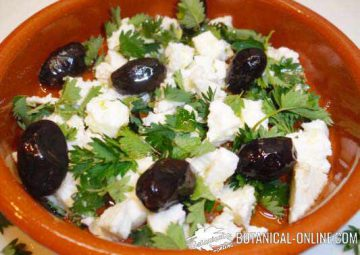Cheese appetizer with olives and burnet  leaves