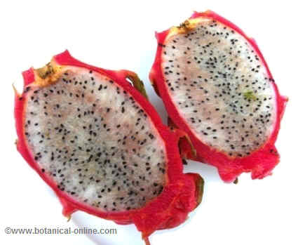 Dragon fruit open transversely