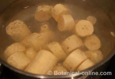 preparation green banana boil
