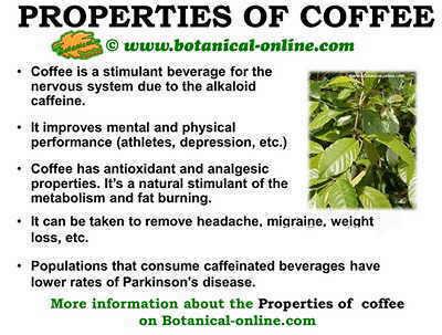 Properties of coffee
