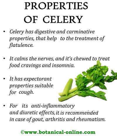 Properties celery
