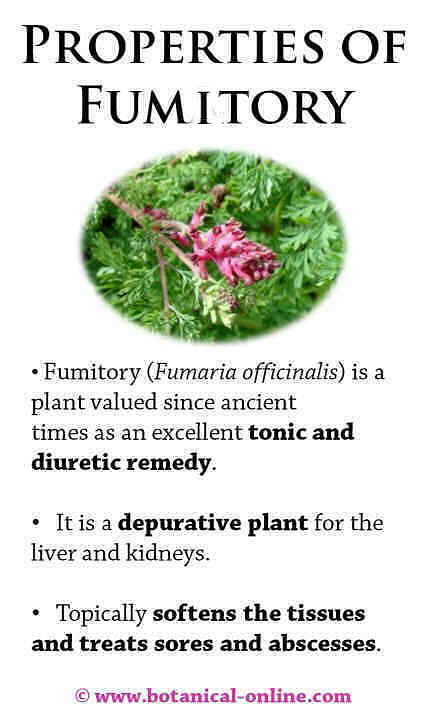 Properties of fumatory