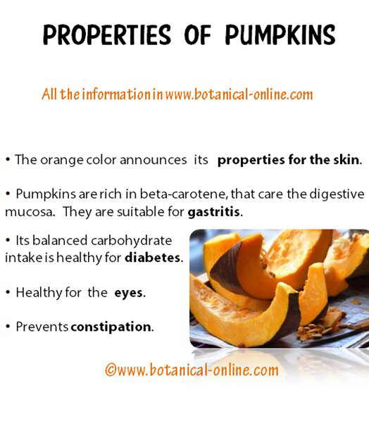 Properties pumpkins