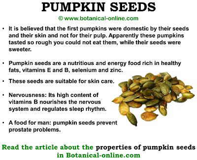 Pumpkin seeds properties