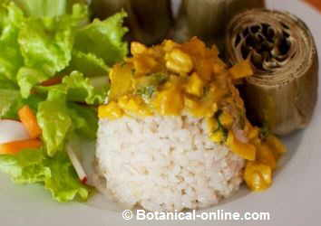 Brown rice with coconut sauce, cashews and curry