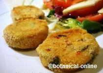 Vegetarian hamburgers