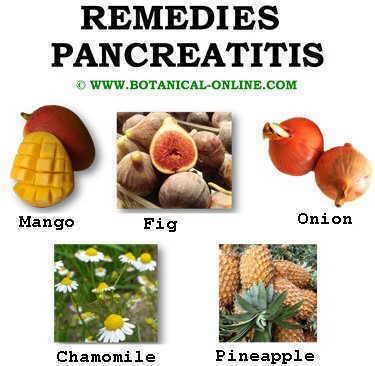 pancreatitis diet food list
