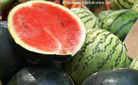 Photo of half watermelon