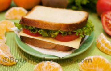 A cheese sandwich with fruit