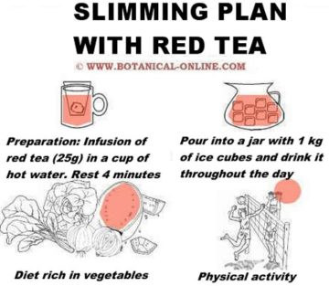 How to loose weight with a red tea slimming plan