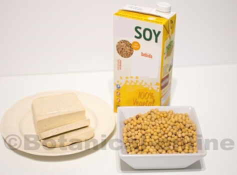 Photo of soy products