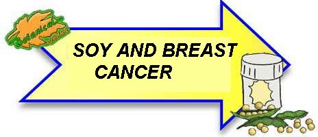 soy and breast cancer