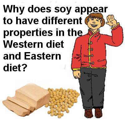 soy different properties