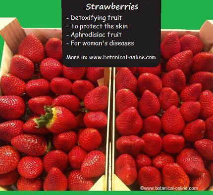strawberry properties