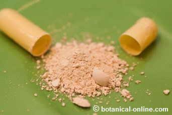 capsule of guanabana